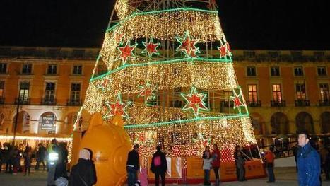 Noël. À Lisbonne, la solidarité brille comme une étoile | Actualités association d'aide aux victimes | Scoop.it