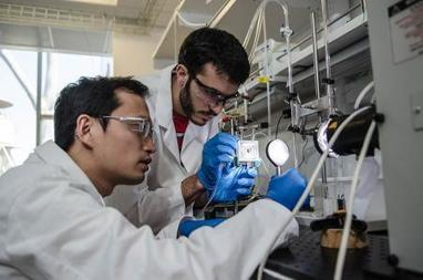 Artificial Leaf Harnesses Sunlight for Efficient Fuel Production | Research | Scoop.it