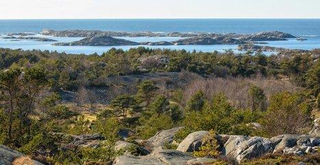 La Suède : future pays sans énergies fossiles ?   Enezgreen   Equipements durables sports outdoor   Scoop.it