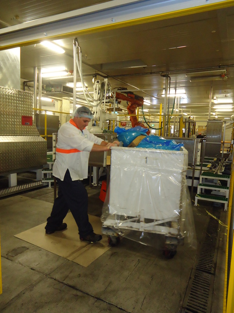 Jason - Packing Room Operator | Health, Safety, Environment and Training in Manufacturing (OHS Quest 2) | Scoop.it
