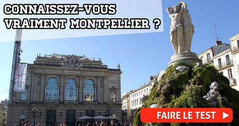 Coupures régulières de la circulation sur l'A9 à St Jean de Vedas - Tout Montpellier | Autoroute A9 | Scoop.it
