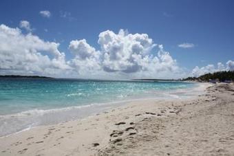 Excursion Focus: Bikini Beach in St. Martin - Royal Caribbean Blog (blog) | St Maarten | Scoop.it