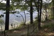 Walden Pond where Thoreau lived simply goes solar - Foster's Daily Democrat | Transcendentalilsm | Scoop.it
