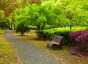 Green spaces deliver lasting mental health benefits | Sustain Our Earth | Scoop.it