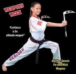 Adriana Shannon Will Never Be Bullied Again Thanks To Amerikick | Kids Karate Classes for Kids | Karate Classes for Kids | Scoop.it