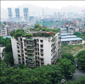 Country in City|Top News|chinadaily.com.cn | Urban Gardening | Scoop.it