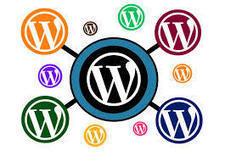 Pourquoi Wordpress et pas un autre CMS ? - Prestataire Web | Communication web professionnelle | Scoop.it