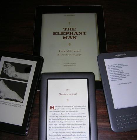 Practical Matters: Digital Publishing Tools for Art Book Publishers ...   ePub 3.0   Scoop.it