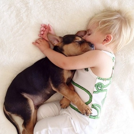A Naptime Story with Dog and Baby | MIX | Scoop.it