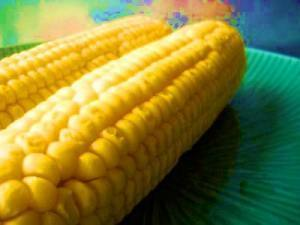 Corn Pros andCons | Food and Nutrition | Scoop.it