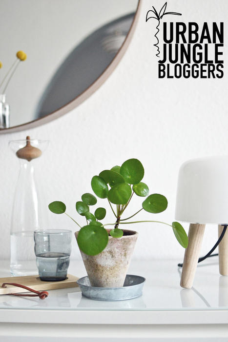 Happy Interior Blog: Urban Jungle Bloggers: Green Social Inspiration | Online communication & marketing | Scoop.it