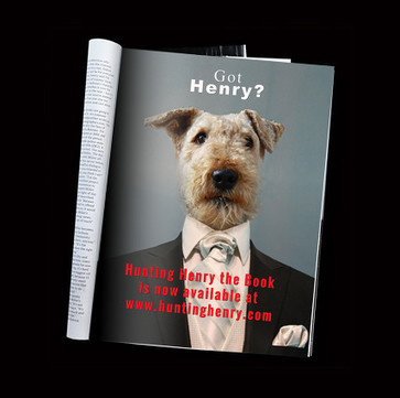 Hunting Henry | Airedale Terriers | Scoop.it