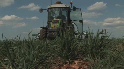 Produisons autrement : desherbage mécanique - le binage | Quels potentiels pour le zéro-herbicide? | Scoop.it