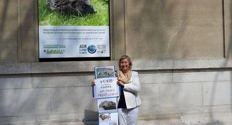 Pétition contre la chasse à la glu | Biodiversité | Scoop.it
