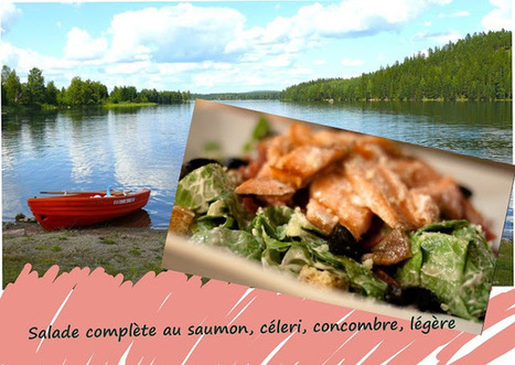 Recette de salade au saumon, basses calories, sans gluten | Street food : la cuisine du monde de la rue | Scoop.it