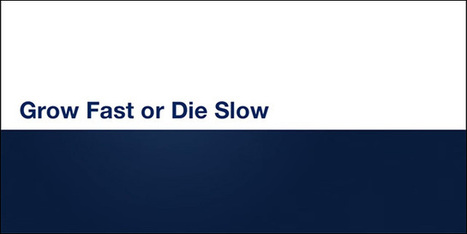 Startup Growth: Grow Fast or Die Slow   Pitch it!   Scoop.it