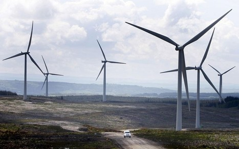 Millions of trees chopped down to make way for Scottish wind farms | My Scotland | Scoop.it