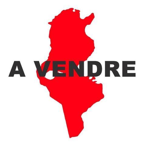 La Tunisie a perdu 39 Milliards de $ en 40 ans de fuites de capitaux ? | Actualités Afrique | TunisiaGates | Scoop.it