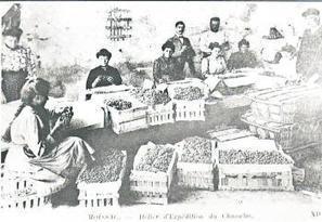 Moissac. A vos archives ! - La Dépêche   Rhit Genealogie   Scoop.it