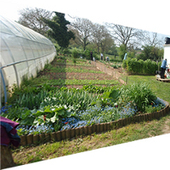 le passe-jardins - Graines de vie, Graines d'envies | Jardins partagés de là-bas et au-delà - Community gardens from the world | Scoop.it