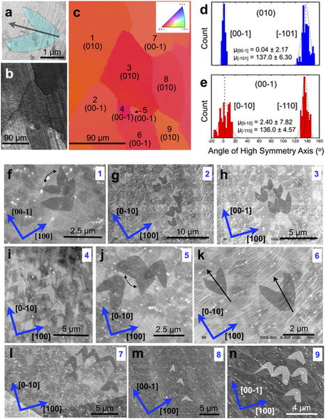 On the growth mode of two-lobed curvilinear graphene domains at atmospheric pressure : Scientific Reports : Nature Publishing Group   Other World   Scoop.it