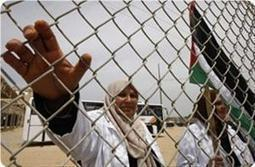WHO warns against effects of siege on health sector in Gaza | Occupied Palestine | Scoop.it