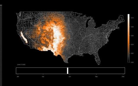 Voorbeeld: vogelvluchten in de VS   Datavisualisatie   Scoop.it
