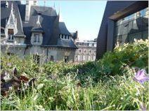 [Juridique] Tout n'est pas permis sur une toiture terrasse ! | Immobilier | Scoop.it