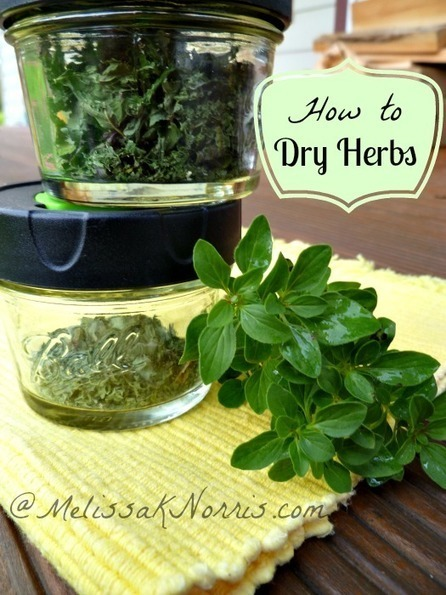 How to Dry Your Own #Herbs | Melissa K. Norris #permaculture #gardening | Limitless learning Universe | Scoop.it