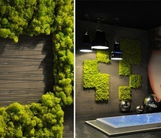 Sublime Vertical Garden Ideas Innovative Indoor