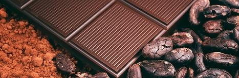 Des composés du cacao révèlent des effets bénéfiques sur l'insuline   Nutrition, Santé & Action   Scoop.it