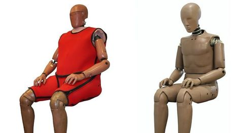 Crash Test Dummies Gain Weight to Save Lives | Stress, Immunity & Resiliency | Scoop.it