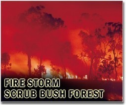 Climate change said driving force behind larger, more extreme wildfiresz | Sustain Our Earth | Scoop.it