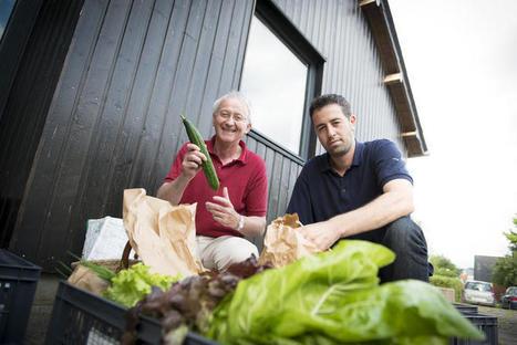 En Bretagne, on s'organise directement entre producteurs et consommateurs | Breizh actu | Scoop.it
