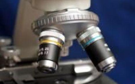 Dalla Co2 possono nascere prodotti industriali. Lo rivela uno studio made in Usa | LucaScoop.it | Scoop.it
