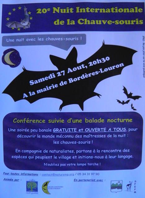 Une nuit en compagnie des chauves-souris à Bordères-Louron le 27 août | Vallée d'Aure - Pyrénées | Scoop.it