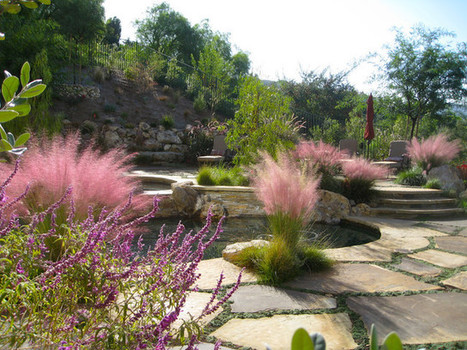 8 Spectacular Grasses to Energize a Fall Garden | Landscaping Lawrenceville | Scoop.it