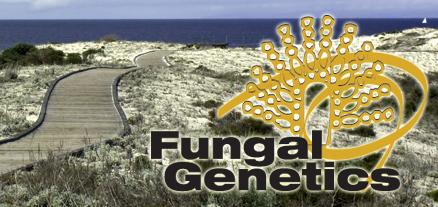 G3: Meeting Report: Fungal Genomics Meets Social Media: Highlights of the 28th Fungal Genetics Conference at Asilomar (2015) | Publications | Scoop.it