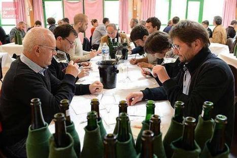 Angers. La Maison du vin rouvrira le 9 juin après cinq mois de fermeture   Le vin quotidien   Scoop.it