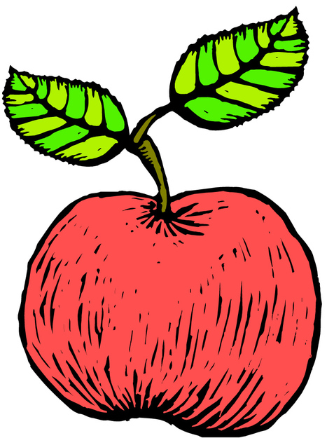 U.S. Apple Association: Educational Materials | The Miracle of Fall | Scoop.it