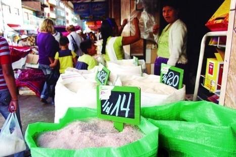 Bolivia: Hay seguridad, pero no soberanía alimentaria | construcciones politicas latinoamericanas | Scoop.it