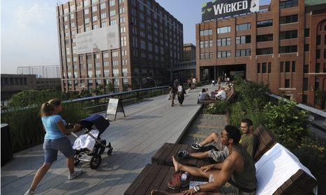 New York's High Line hit by hardy cockroaches never before seen in US | Local Economy in Action | Scoop.it