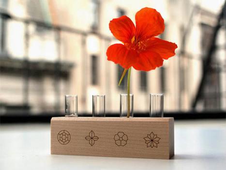 herb kits? so last year! grow edible flowers instead | Garden Designer | Scoop.it