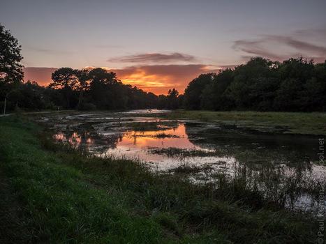 je fais dans l'aube et le crépuscule, ces temps-ci (7 photos) | photo en Bretagne - Finistère | Scoop.it