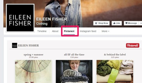 Facebook Tab for Pinterest and Instagram | Social Media Marketing | Scoop.it