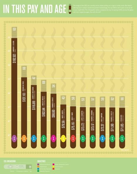 Voorbeeld: CEO's, hun leeftijd en salaris | Datavisualisatie | Scoop.it