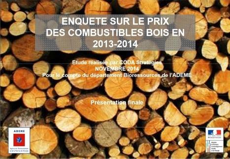 Etude sur le prix des combustibles bois en 2013-2014 - Netbois infos 3547 | Emplois verts | Scoop.it