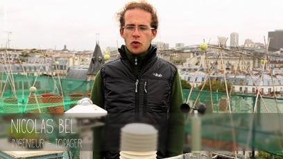 Cultiver sur les toits - Tendances - Du Côté de Chez Vous | Agriculture urbaine, architecture et urbanisme durable | Scoop.it