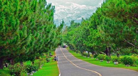 Don Salvador Benedicto: Summer Capital of Negros Occidental | Philippine Travel | Scoop.it