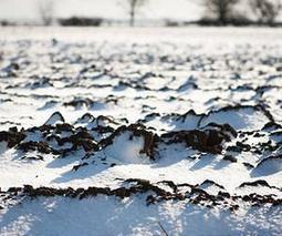 Scientists uncover the secret life of frozen soils | Sustain Our Earth | Scoop.it